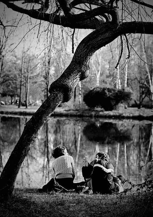 Под дрвото, покрај езерото (Димитар Петровски)